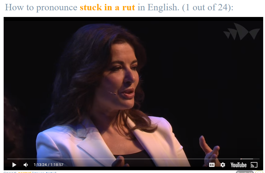 TV Celebrity chef Nigella Lawson tells the interview that sometimes she feels she gets stuck in a rut when trying to find new recipe ideas.