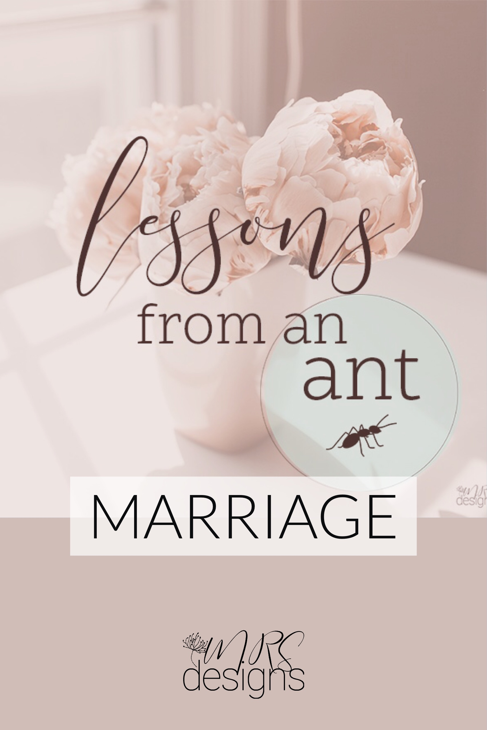 Lessons from an Ant on Marriage. MRSdesigns.net