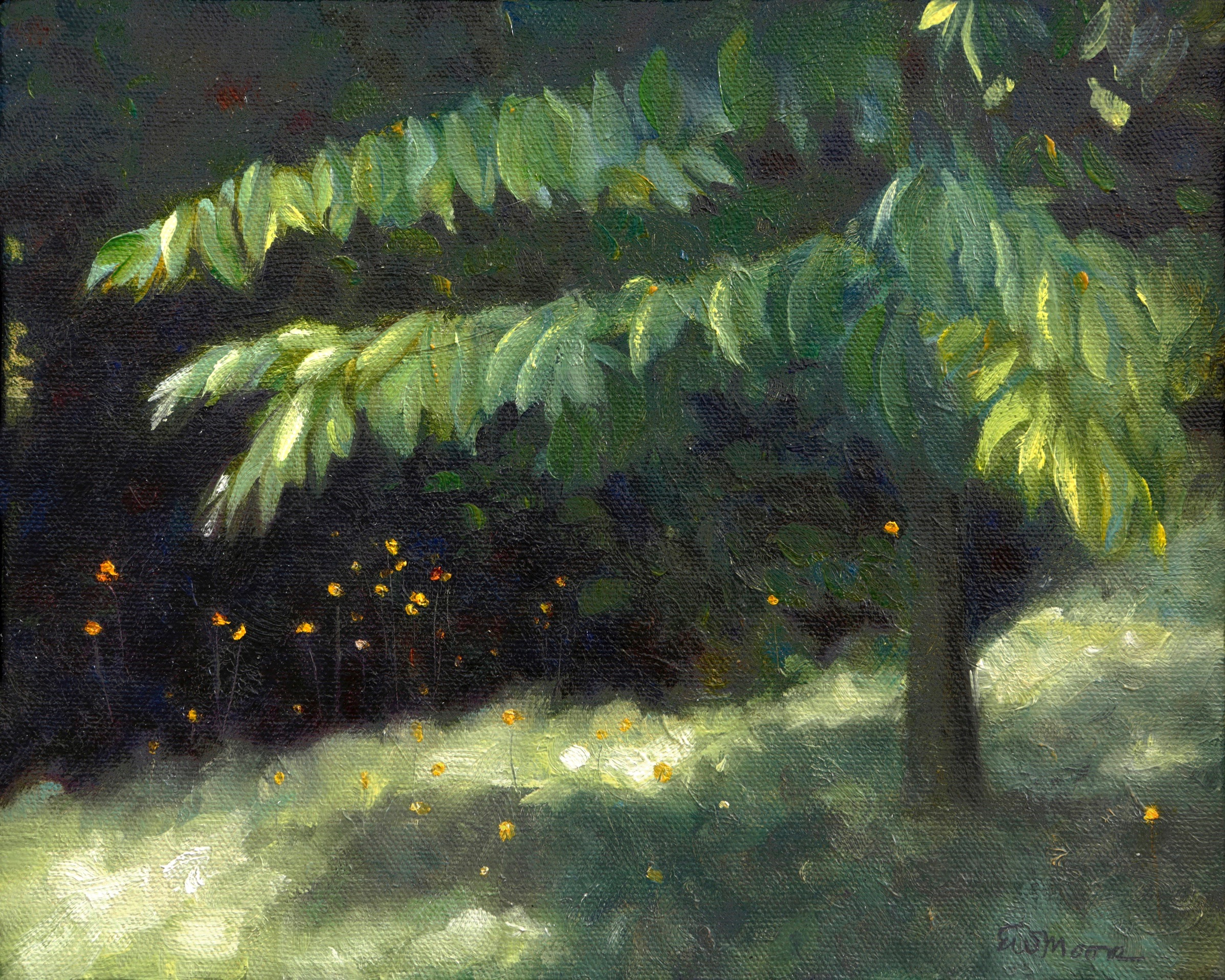 Hawkweed under the Chestnut Tree