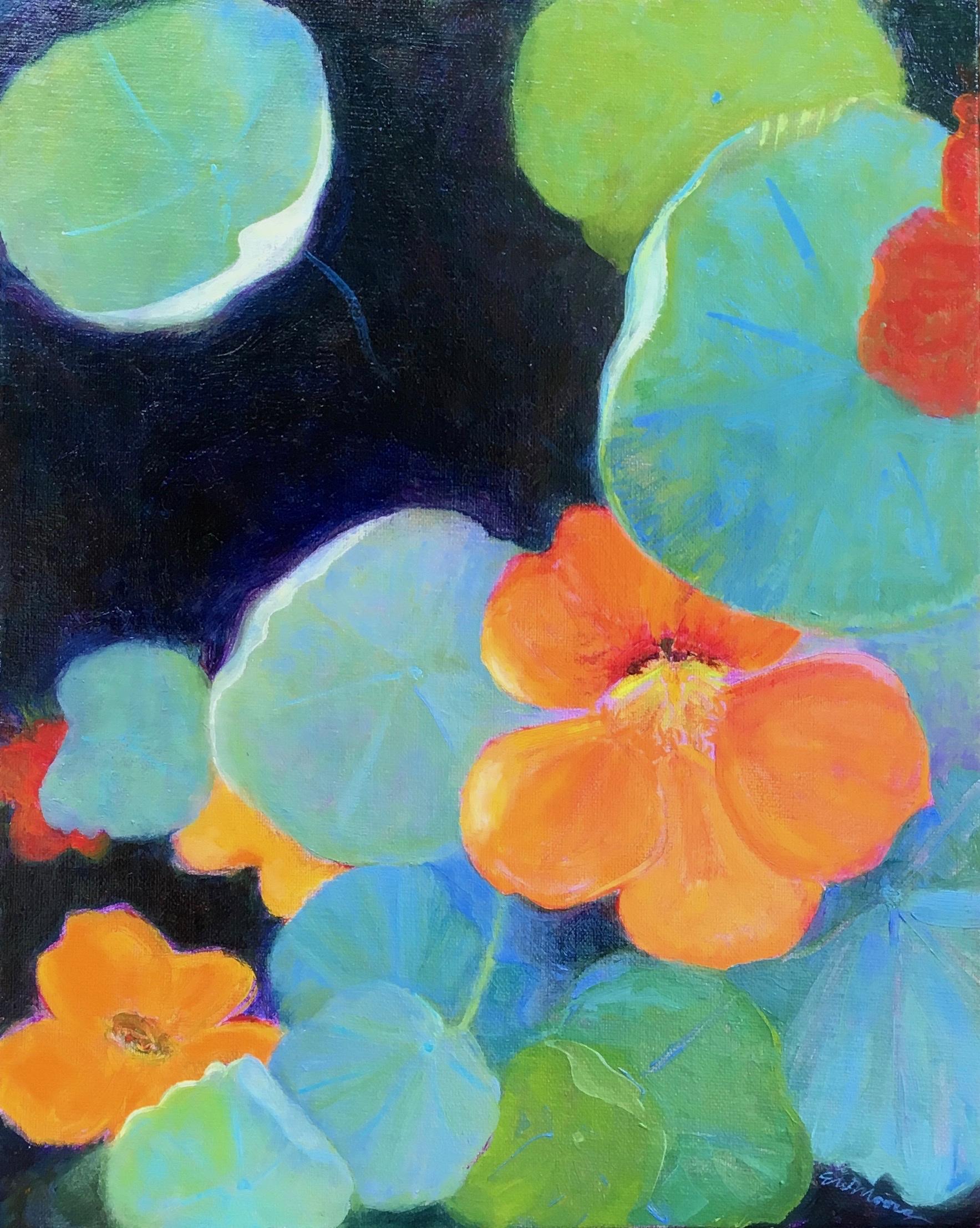 Nasturtium in Full Bloom