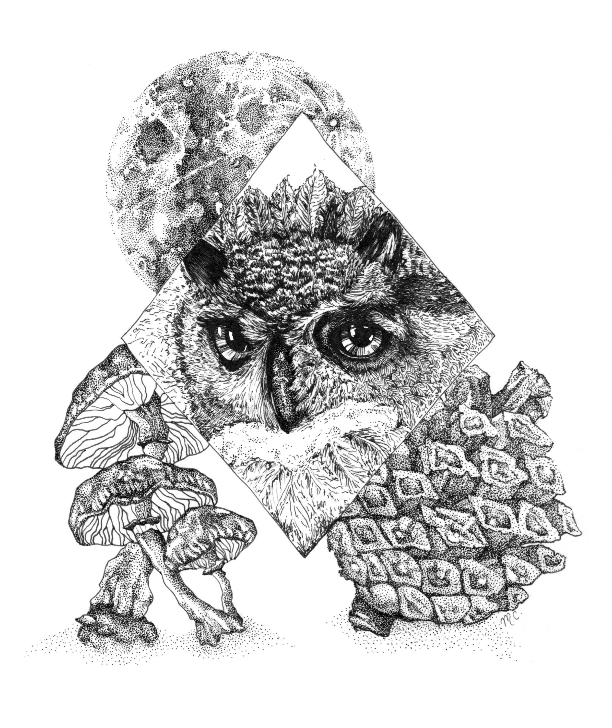 OwlMoon2.jpg