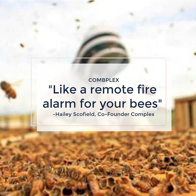 Our goal is to help beekeepers keep their colonies healthy as they move around the country by using remote electronic devices that monitor colony health. 🐝🐝🐝🐝🐝🐝🐝🐝🐝🐝 Are you a beekeeper? We want to hear from EVERYONE that uses innovative techniques to manage honey bee colony health!