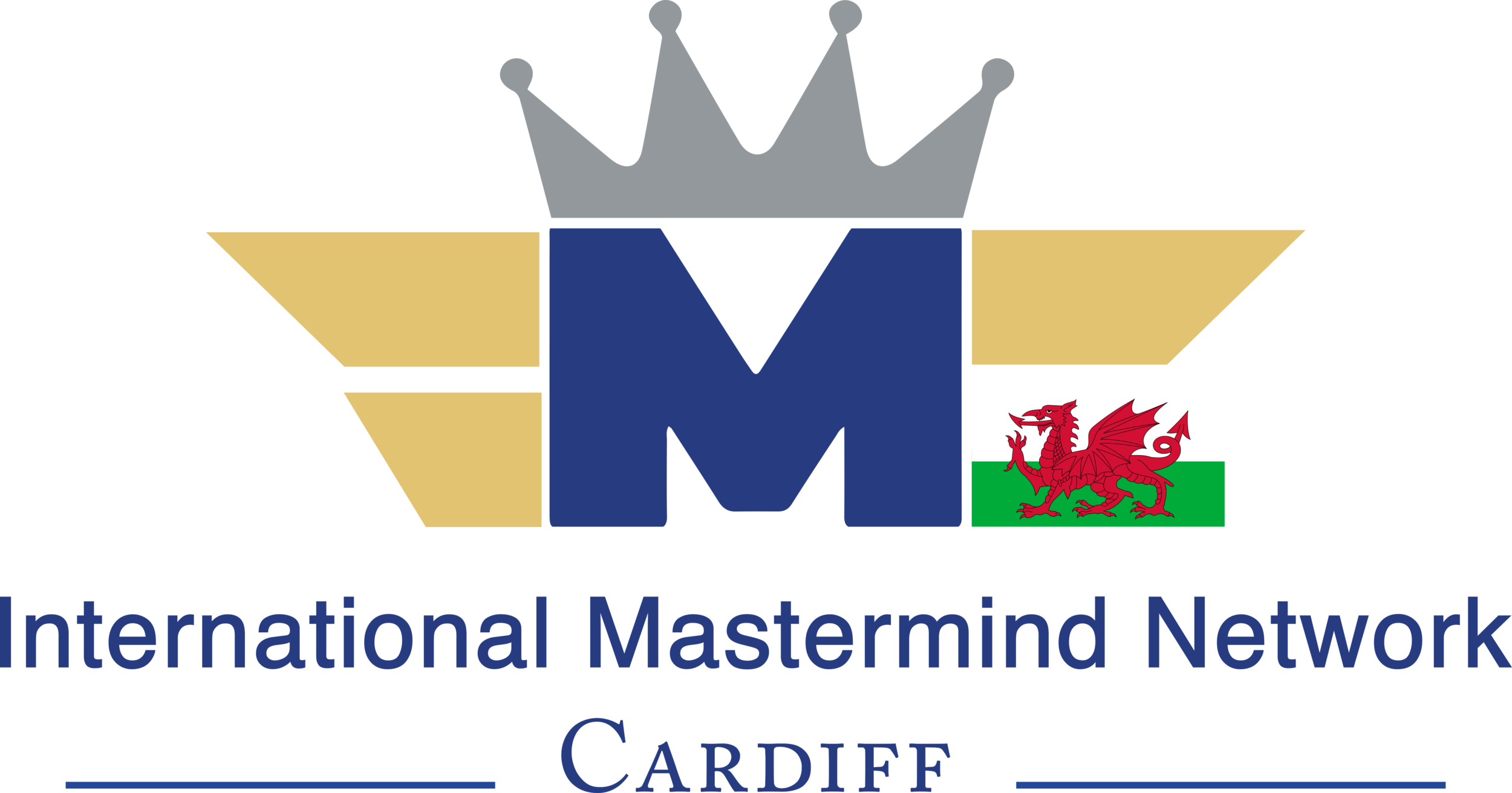 IMN-Cardiff-Logo png.png
