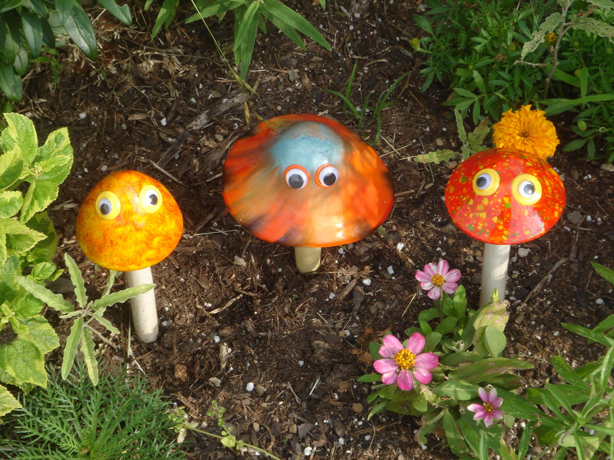 mushroomsgooglyfinal1500.jpg