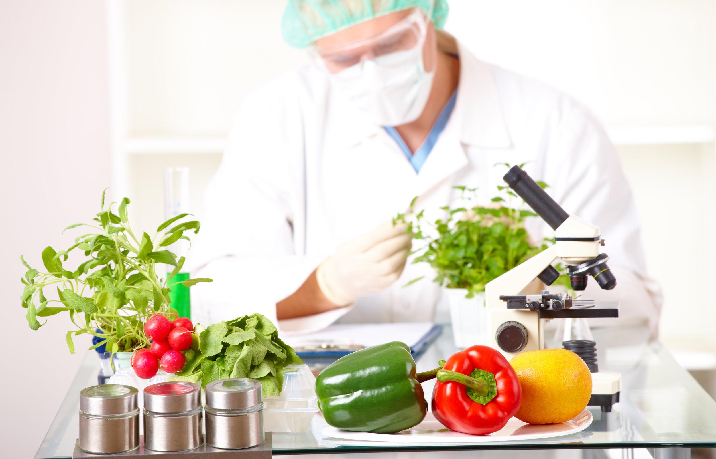 Badanie żywności -