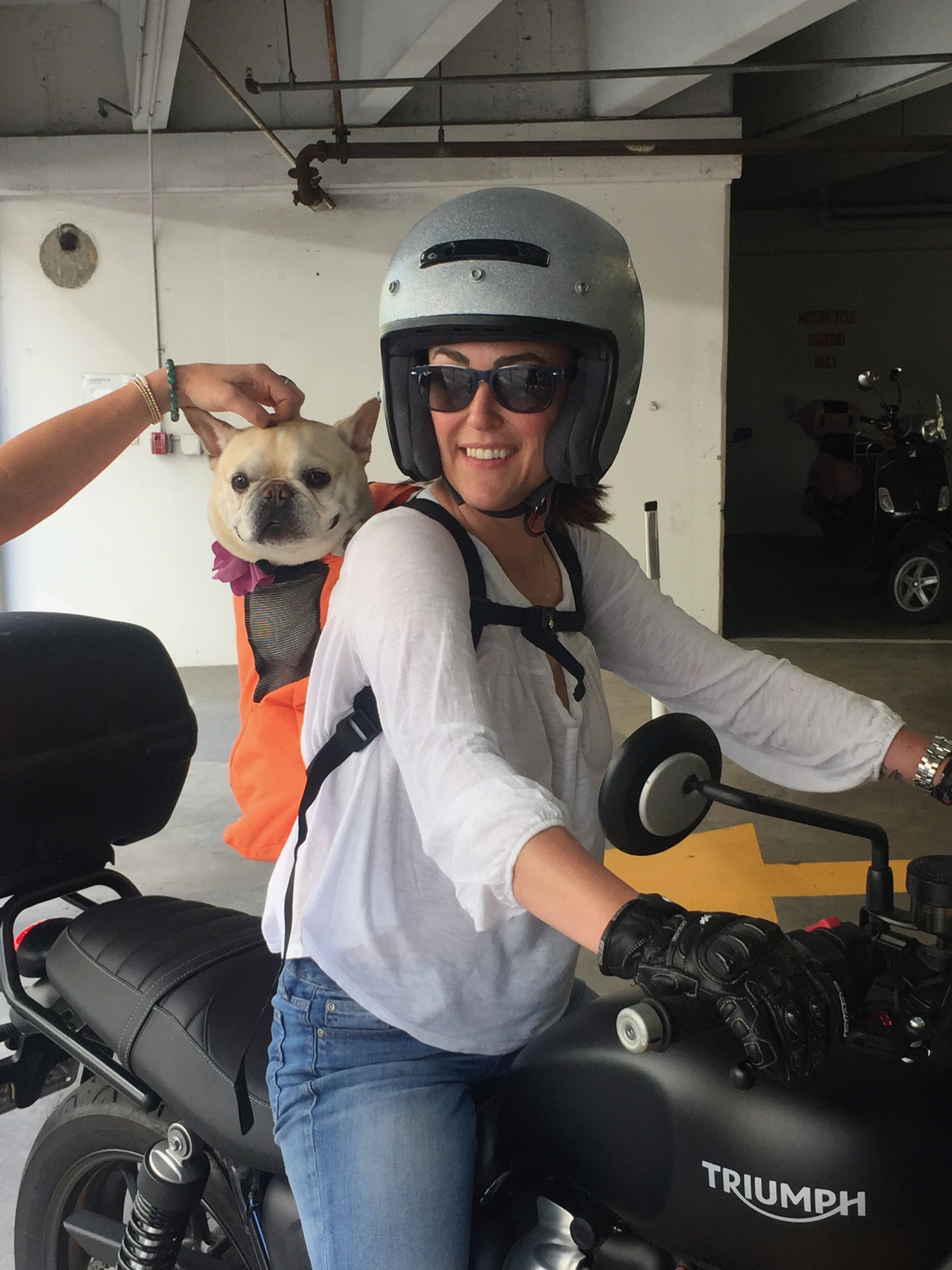 My 2 Loves: My Dog & Street Twin