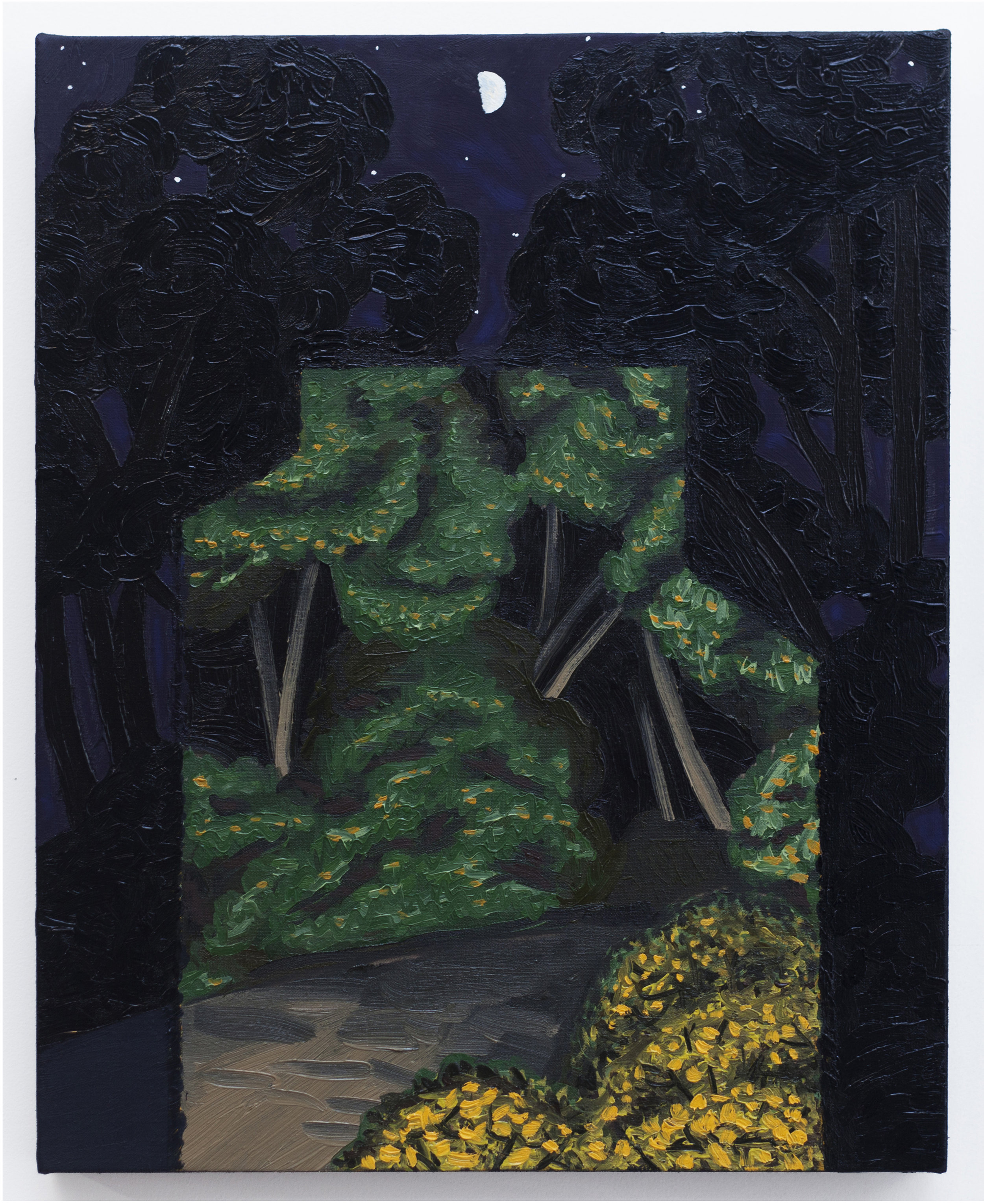 Forest Projection