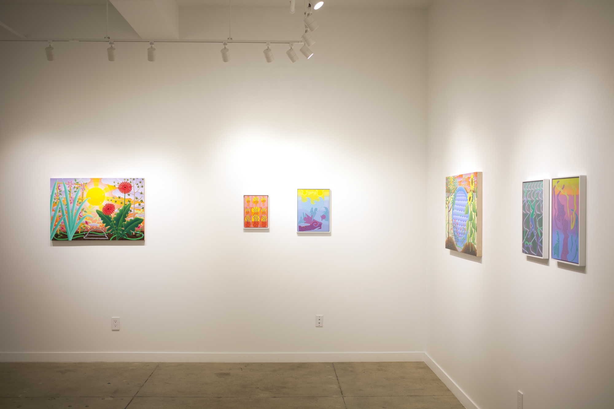 Installation images of my two-person show with Amy Lincoln,  PERENNIAL VISIONS , at Project: ARTspace in 2019.