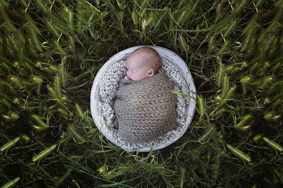 South Gippsland newborn photographer