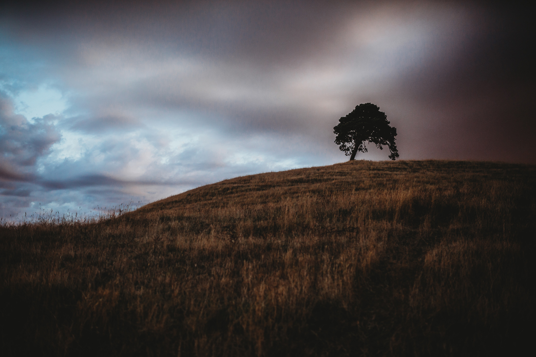 one tree hill - Korumburra - South Gippsland - Family shoot