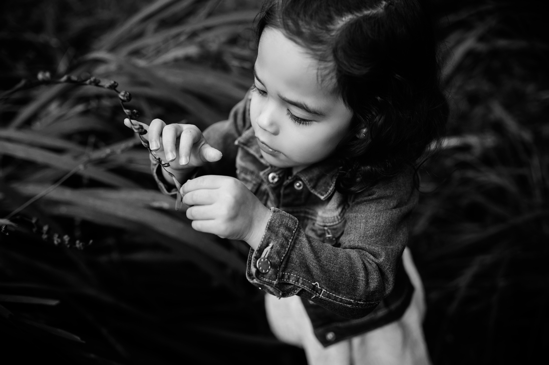 melbourne family photographer (41)_1.jpg