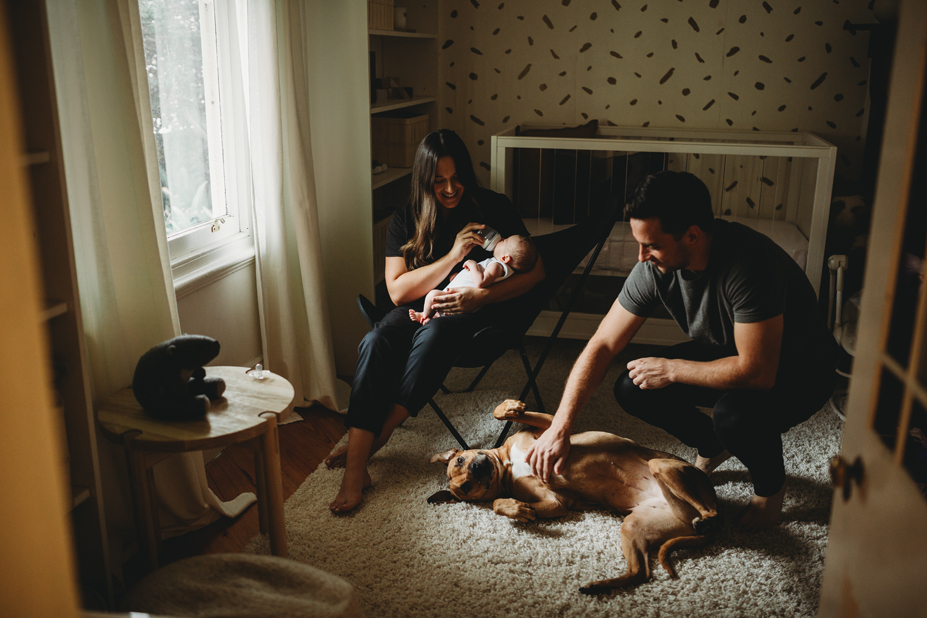 family - Melbourne - newborn photography - lifestyle - pets