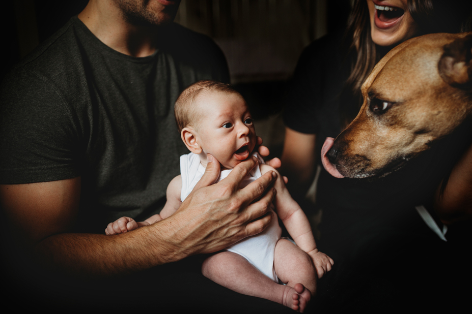licks from the fur baby - Melbourne newborn photographer - lifestyle photography