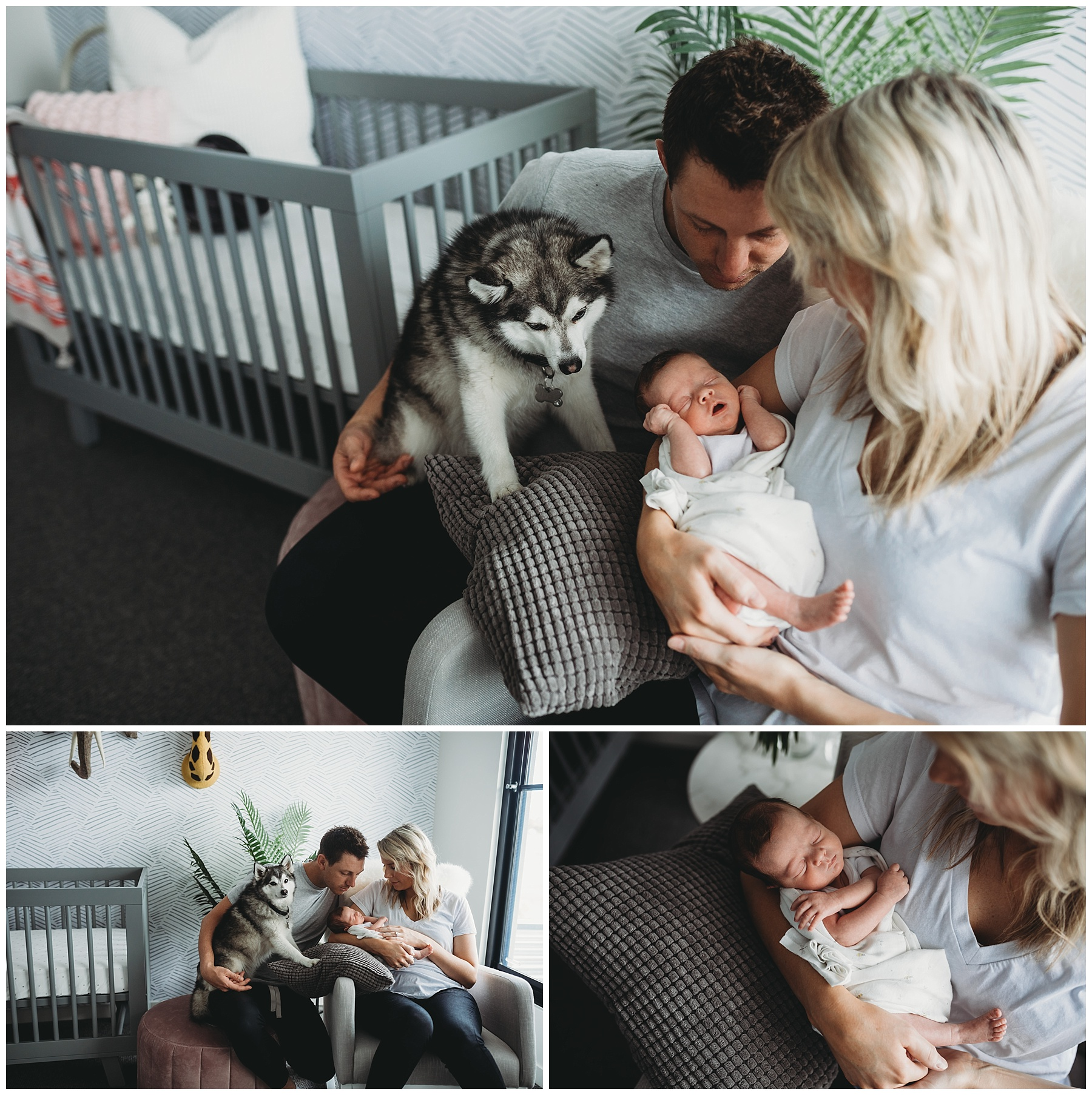 natural newborn photography - melbourne