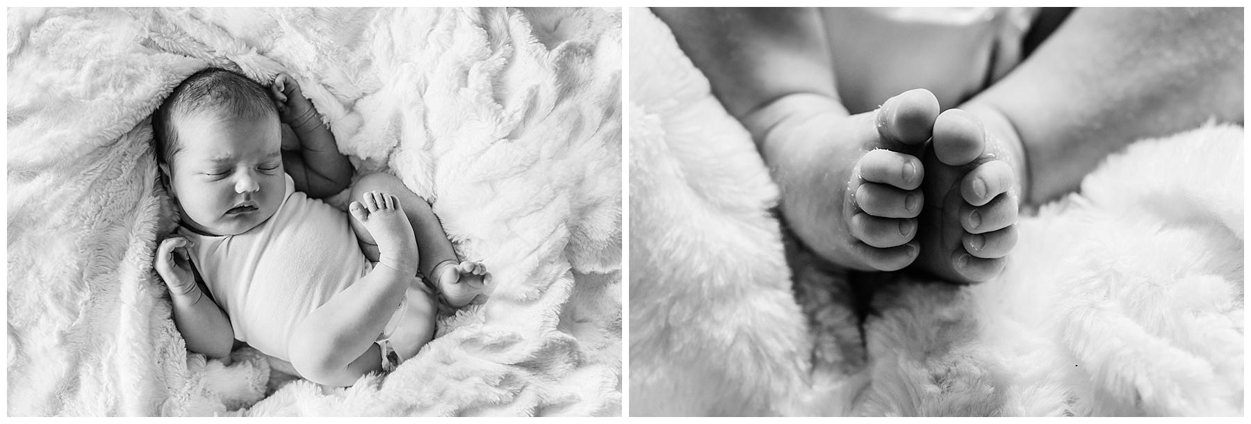 melbourne newborn photographer (19).jpg