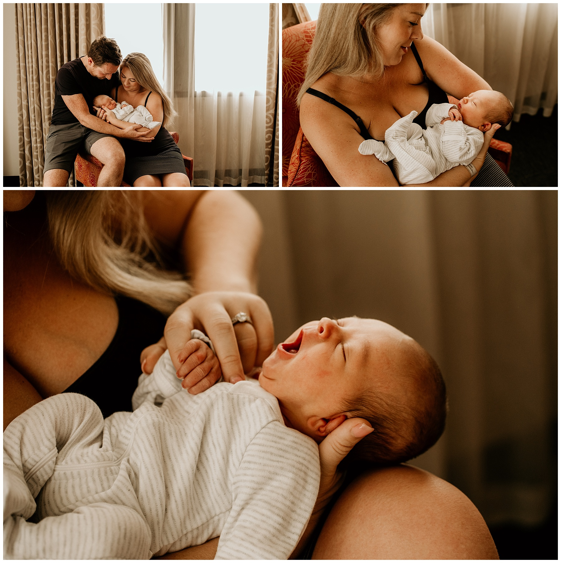 phillip island newborn photography