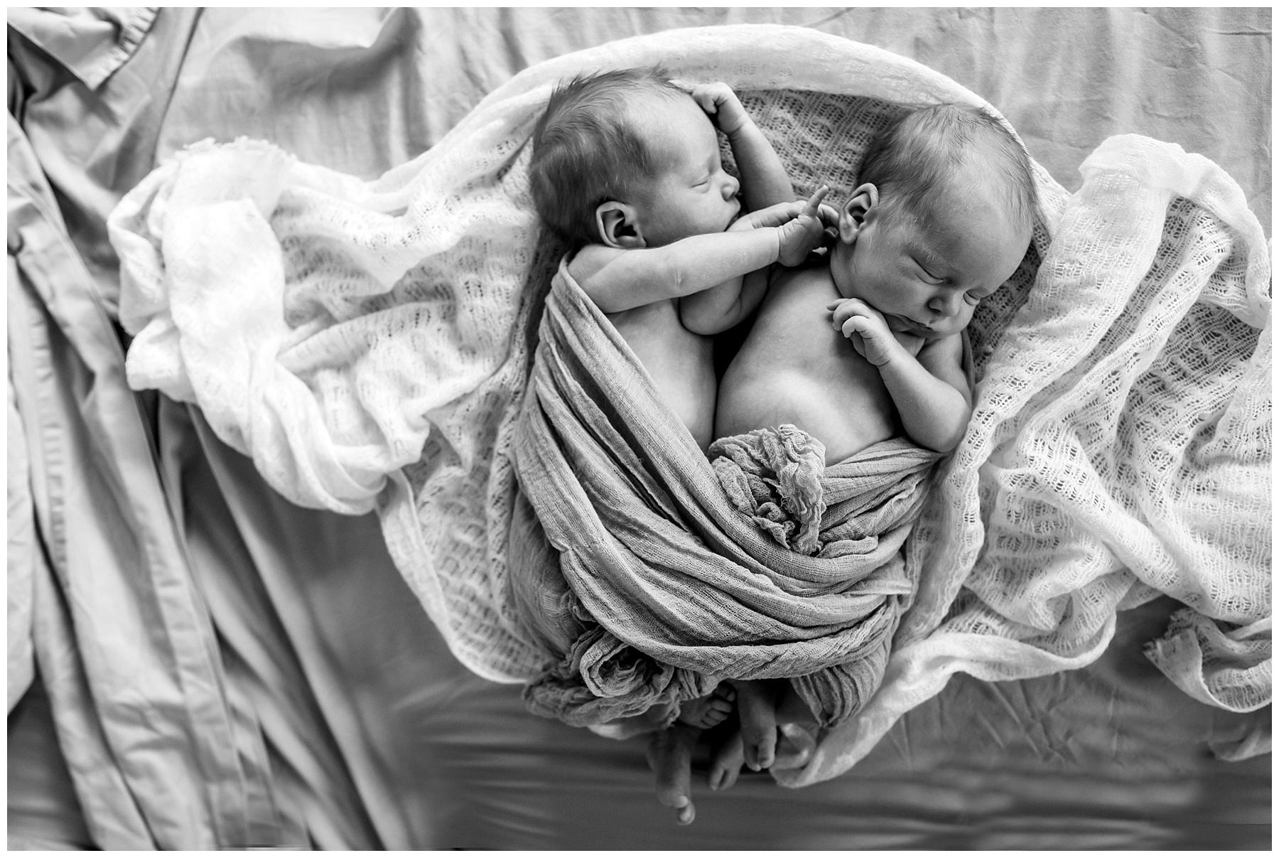 drouin newborn photography - twins