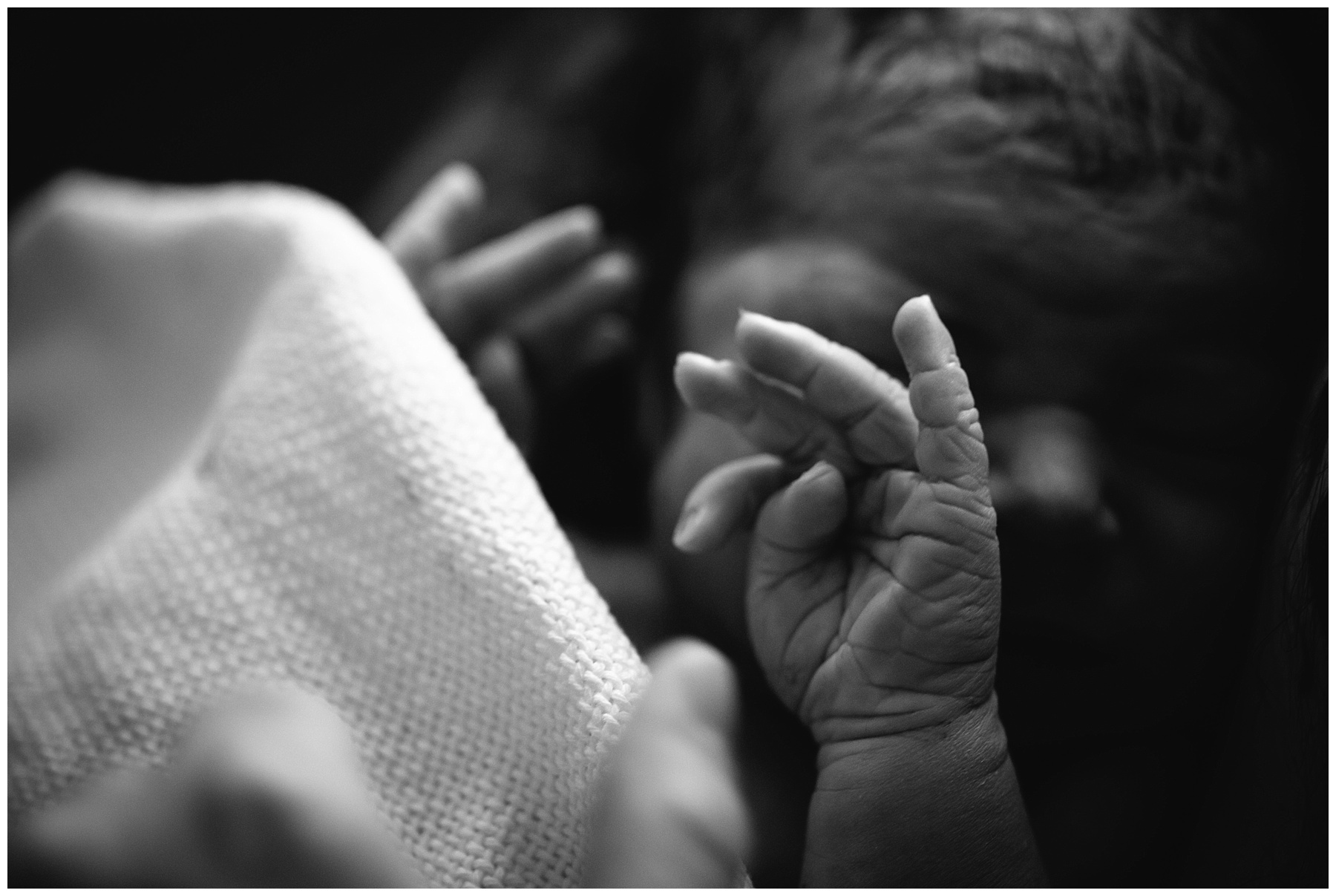 melbourne birth photography (28).jpg