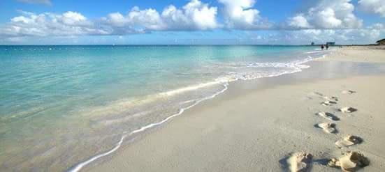 aruba-beach.jpg