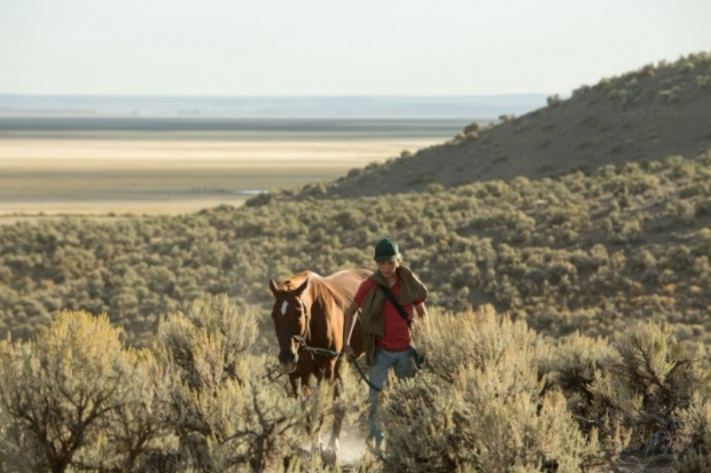 Walking through the Eastern Oregon desert with a horse with a long name...
