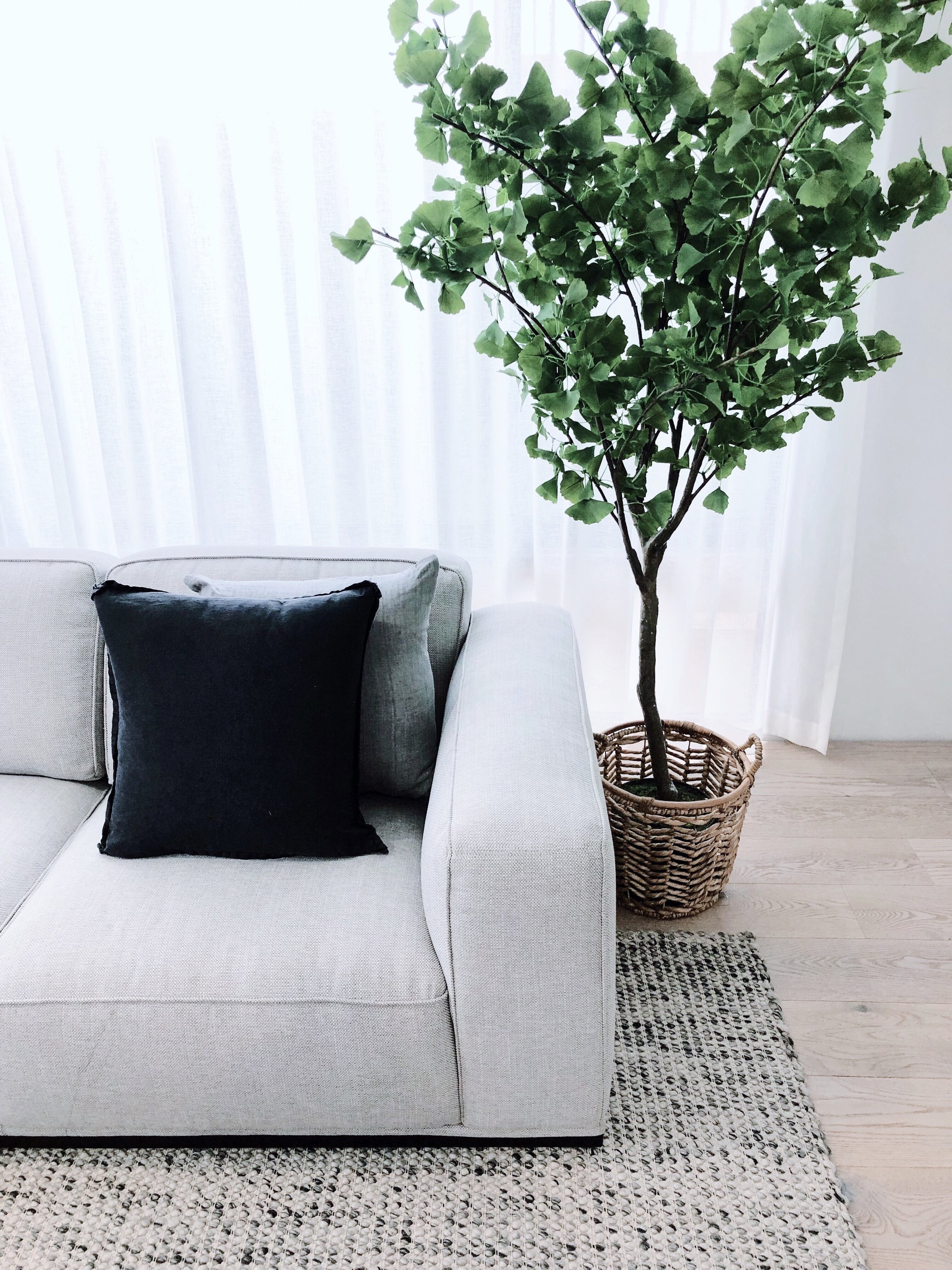 Featuring the  Home Republic Botanical Plant Ginko Tree and the Home Republic Belgian Vintage Washed Linen Charcoal Cushion.  Shop the look below -