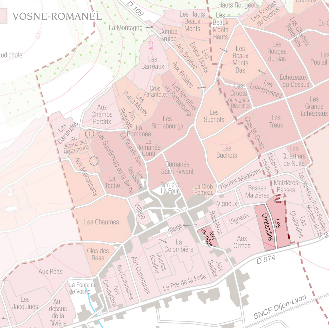 Vosne-Romanée - This cuvée of Vosne-Romanée village, comes from a blending of two plots situated in