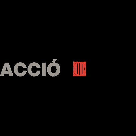 ACCIÓFINAL.png
