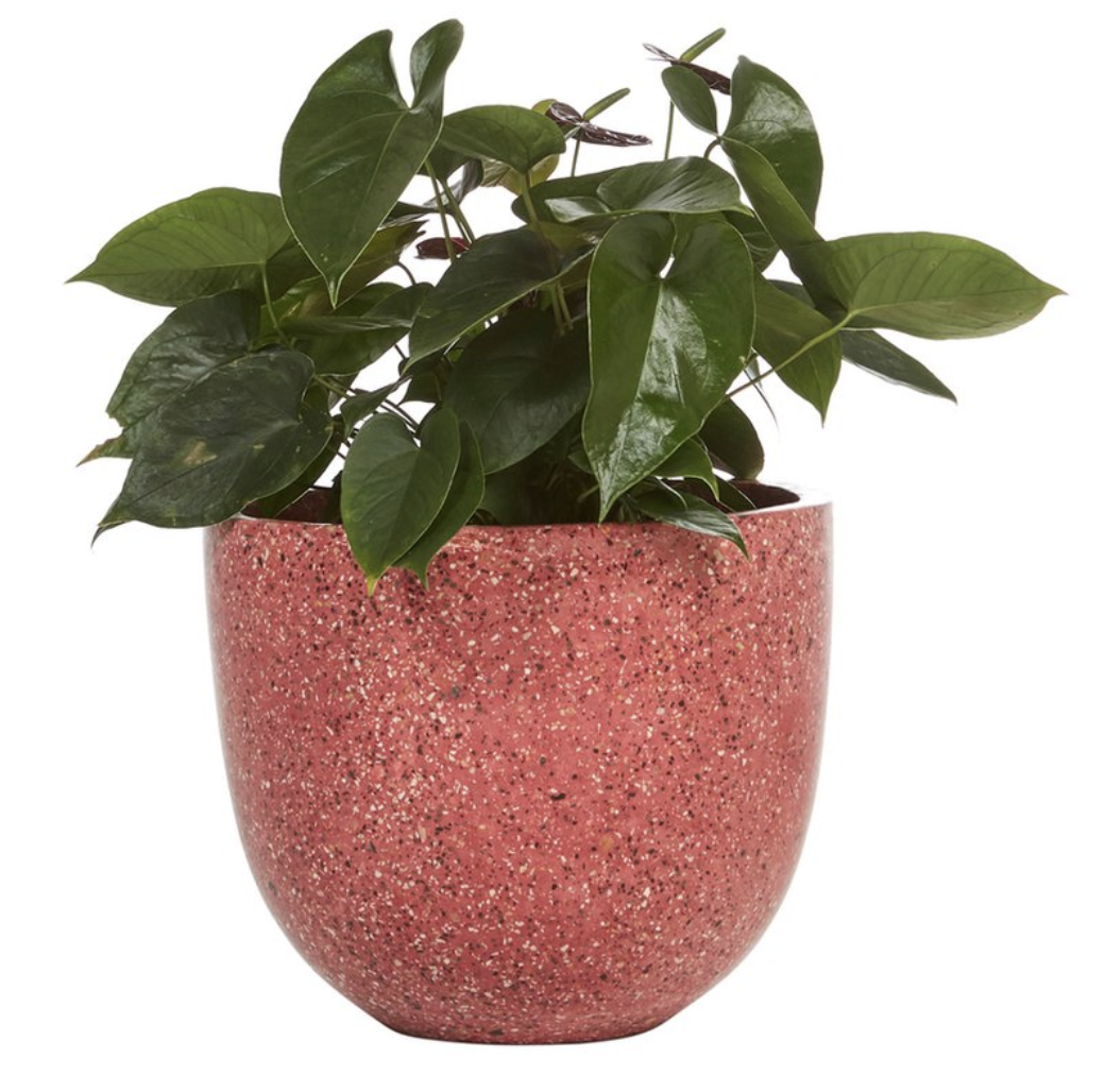 Fenton and Fenton - Terrazo Pot