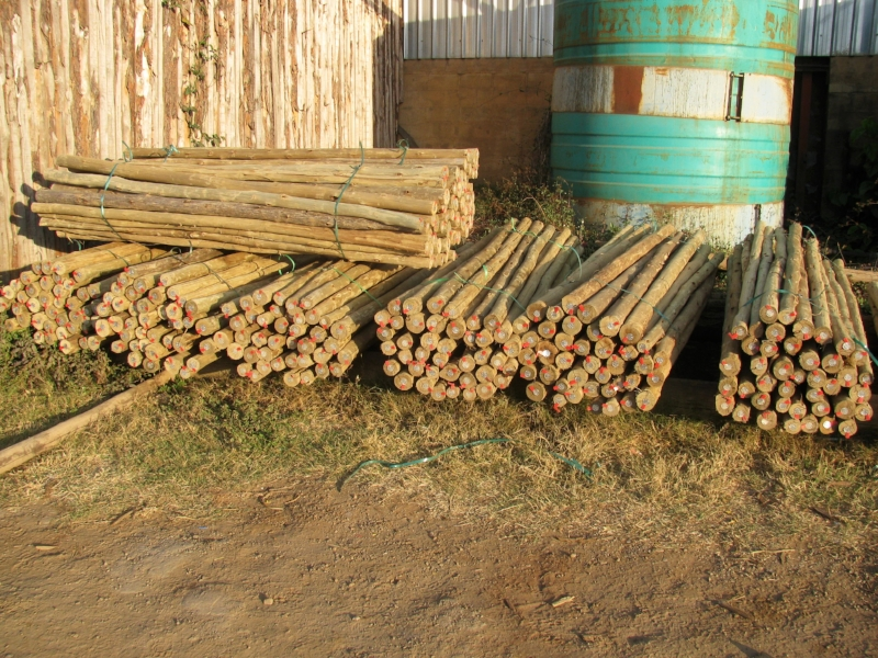 cca-treated-poles