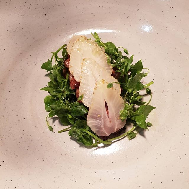 Grilled Danish langoustine, fermented green strawberries, celery & chickweed. #bibgourmand2019 #marvogben #seafood #nordic #michelin #fromseatotable @fiskerikajen  @ingwersen.dk #fromfarmtotable