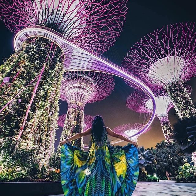 ✈️ SINGAPORE! We're taking off on a big adventure to the Merlion city next week with @qantas @sofitel and @visit_singapore and we're excited! 🙌 We'll be checking out some of the latest and greatest places to explore. Where are your favourite places to go in the orchid city? 🙏 Pic: @seathebreezee . . . . . . . #singapore #visitsingapore #visitsingapore2018 #singapore_insta #singaporegirl #travel #travelblogger #travelbloggers #travelphotography #travelguide #travelgram #gardensbythebay #gardensbythebaysingapore #marinabaysands #supertreegrove #qantas #sofitel #singaporean #qantasairways #jetstarasia #fashion #singaporeinsiders