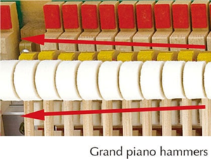 88-key Linear Graded Hammers—the first digital piano keyboard ever to feature realistic weighting on every key.png