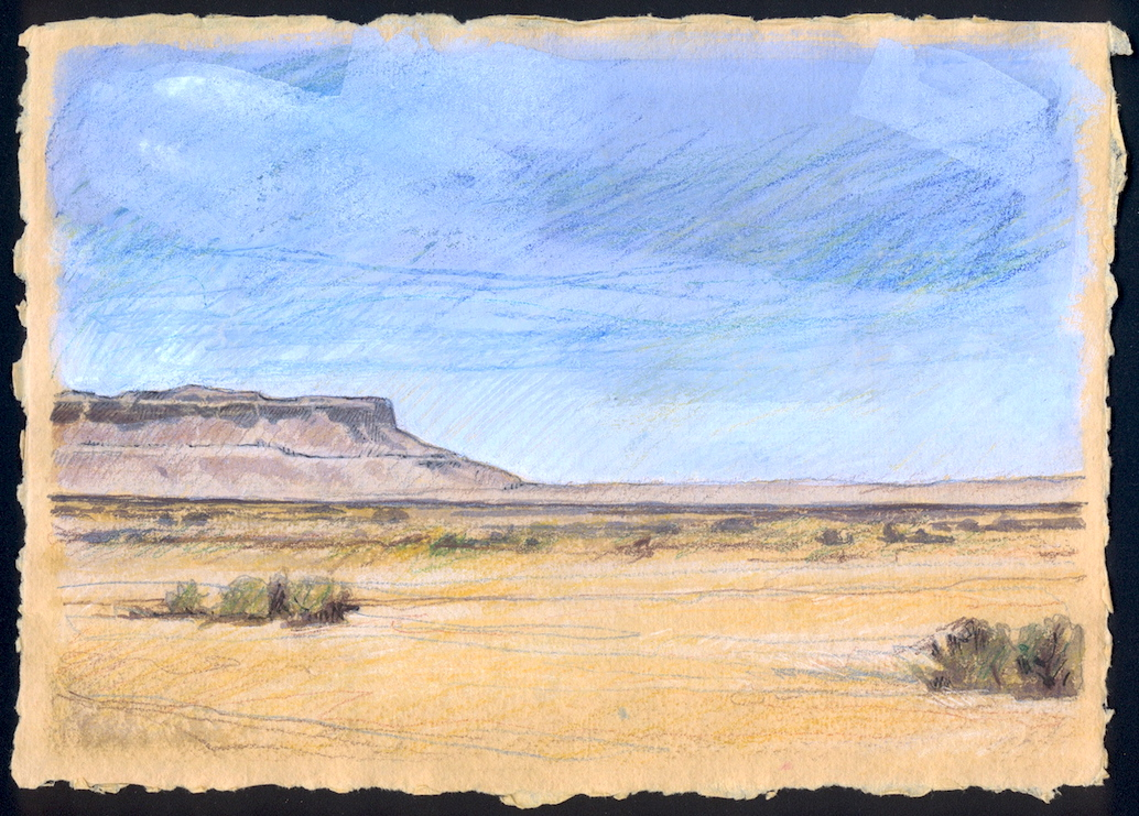New Mexico Desertscape