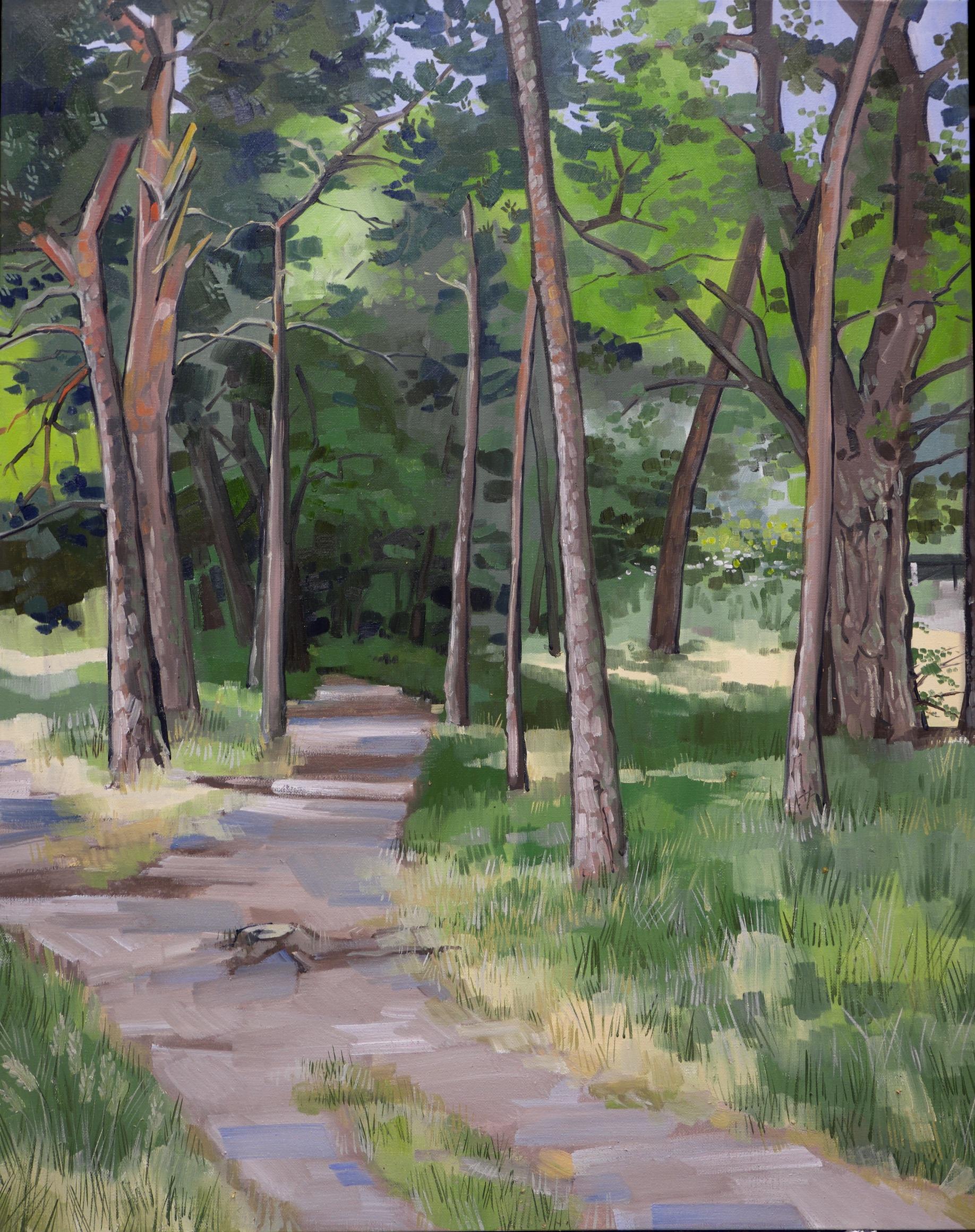 Fir trees, Hampstead Heath