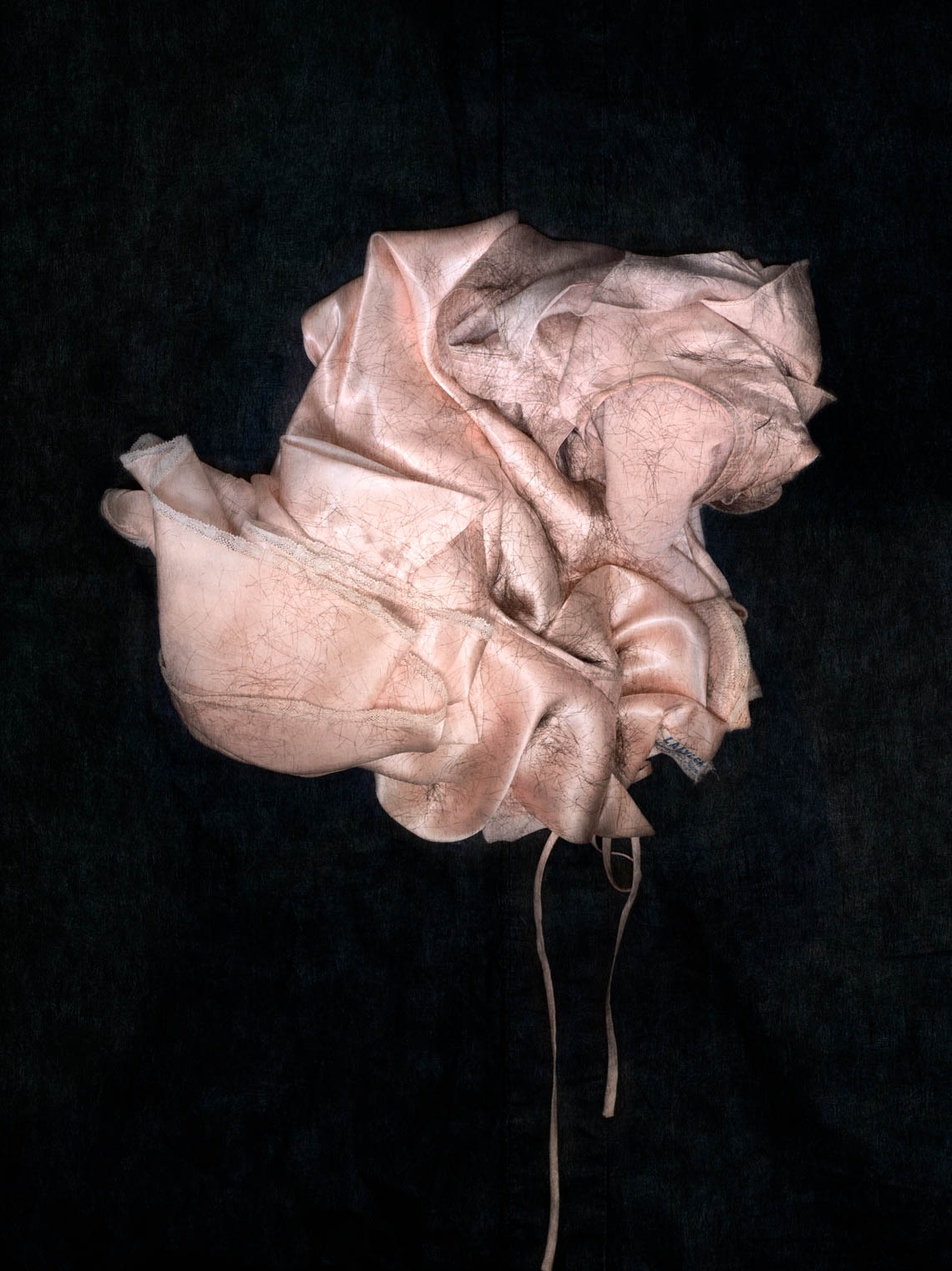 The Silk Dress, 2017