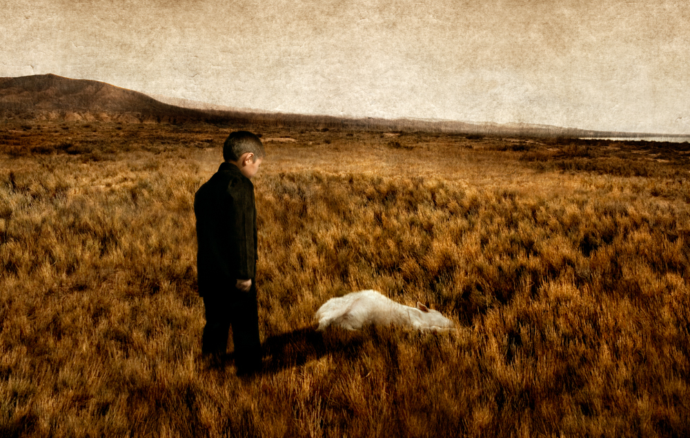The Boy and the Lamb, 2010
