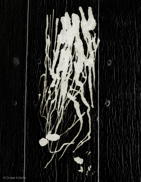Laura, Ink on Wall, 2008