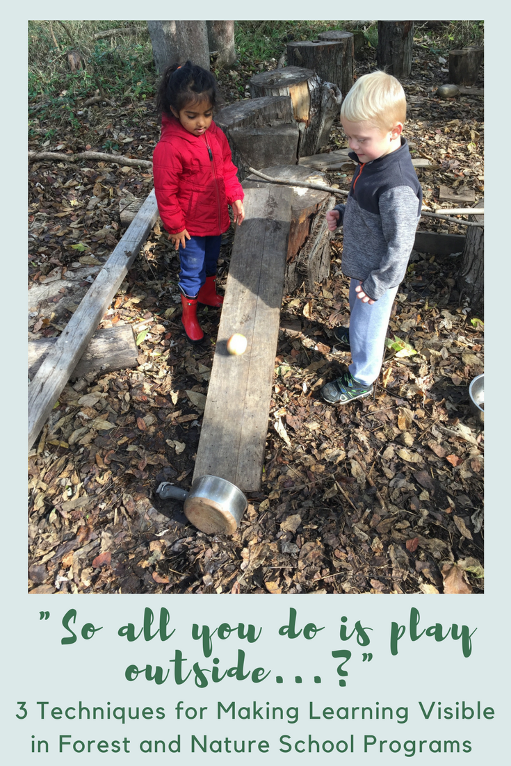"""""""So all you do is play outside...?"""" - 3 Tools for Making Learning Visible in Forest and Nature School Programs"""