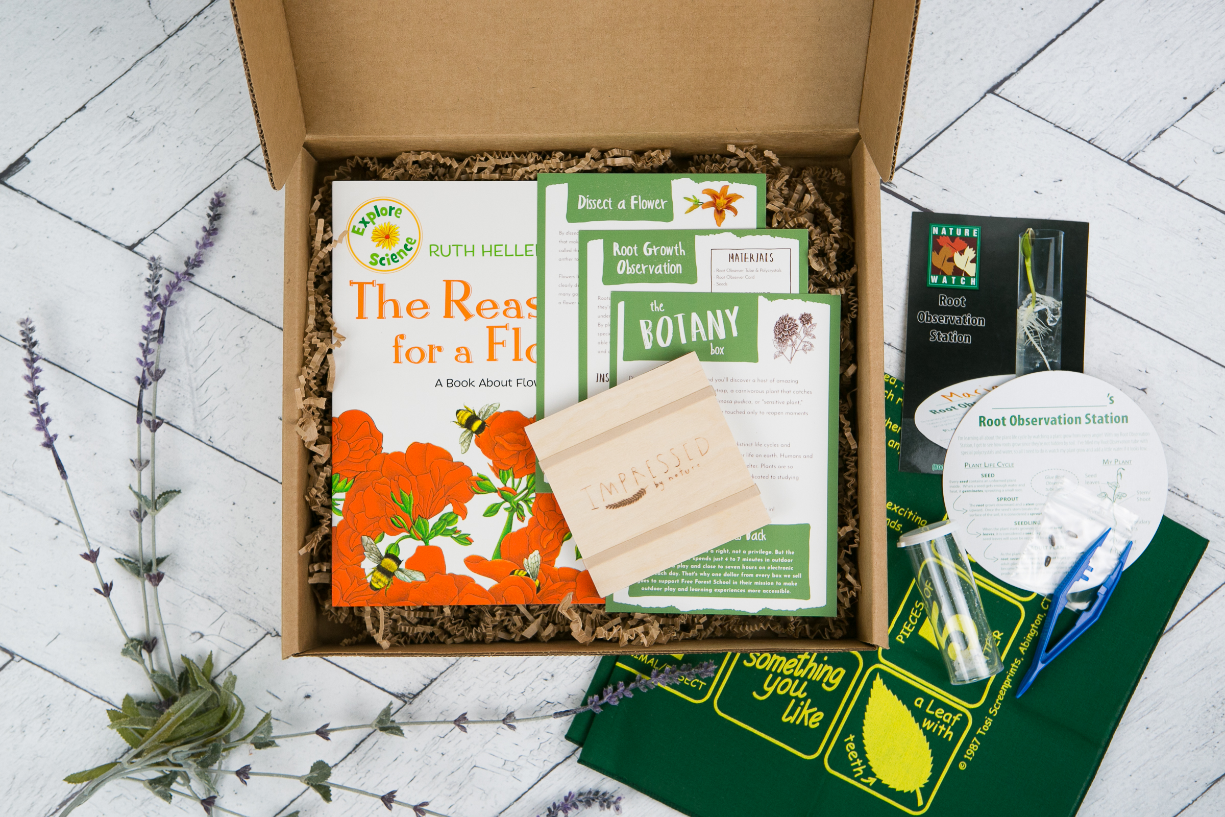 The Botany Box.jpg