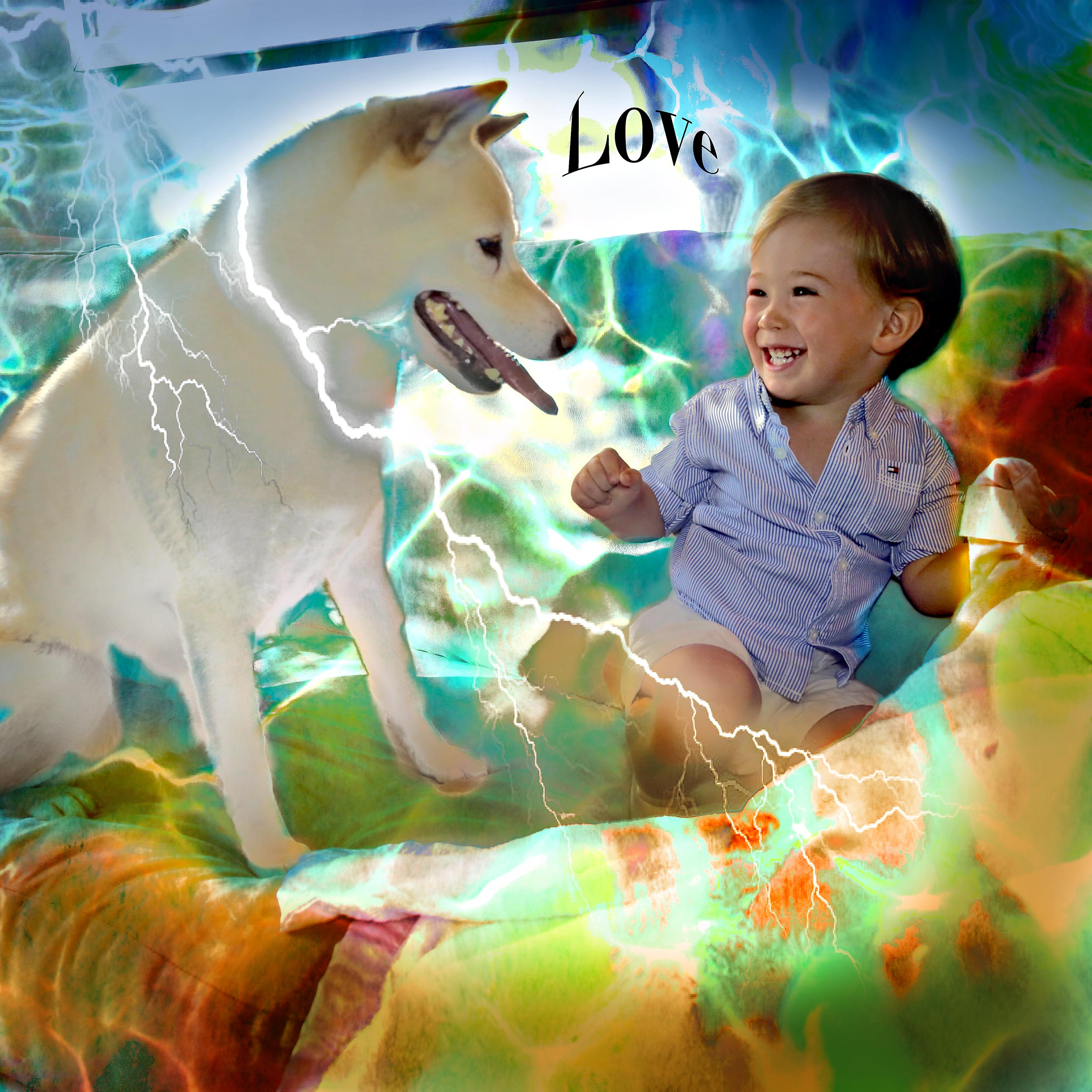 Babies-and-Dogs-Leo-and-Tomo-Love.jpg