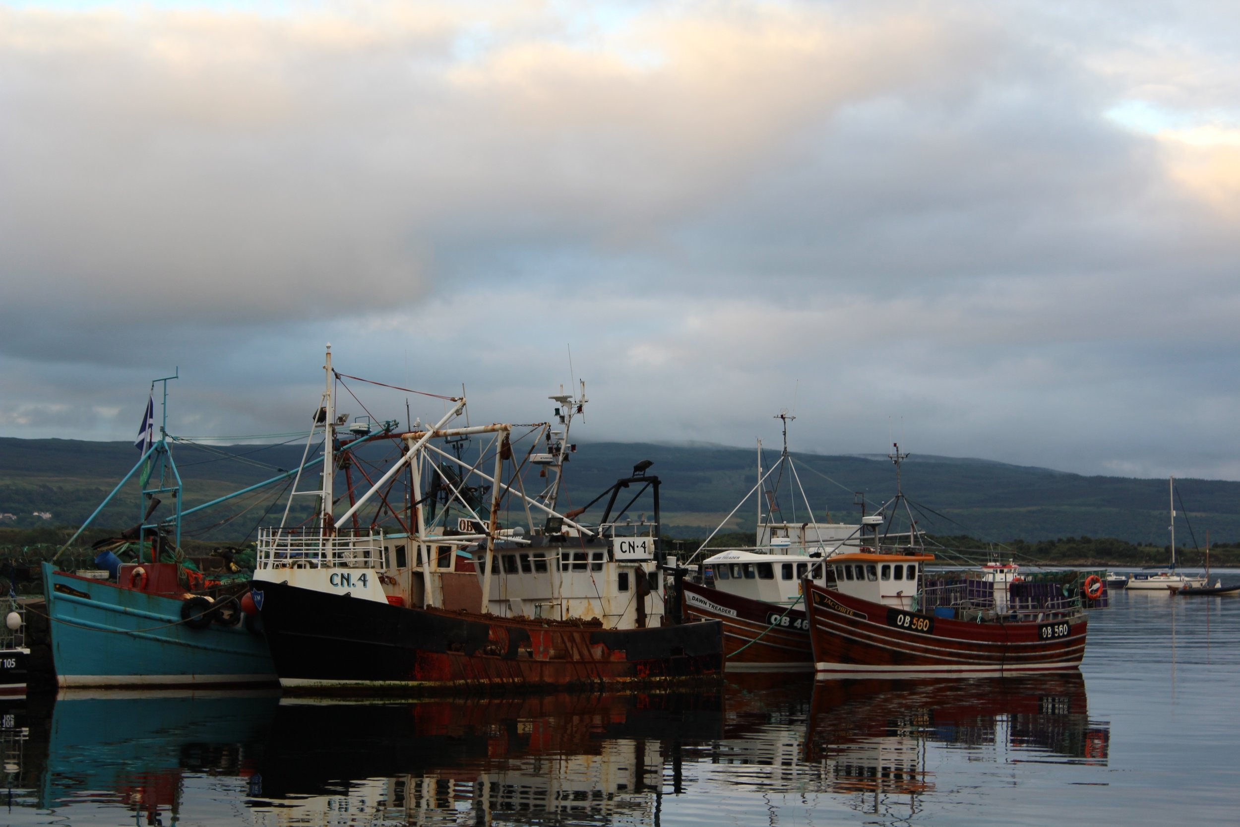 Tobermory Harbor