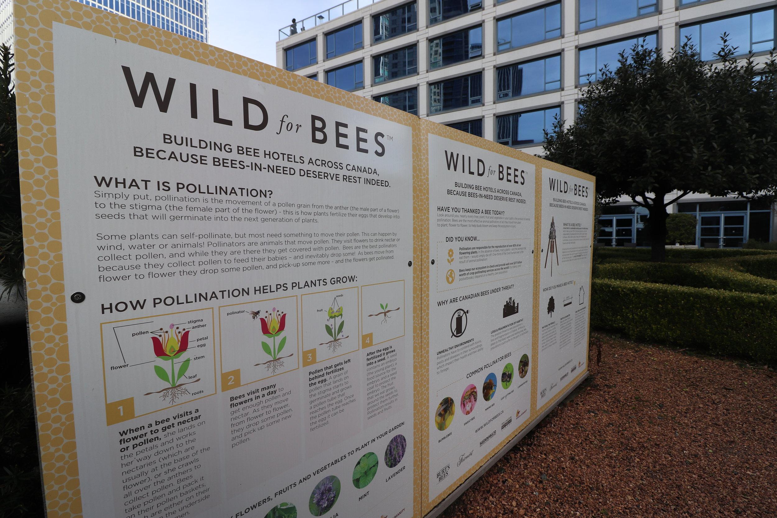 Bee Information