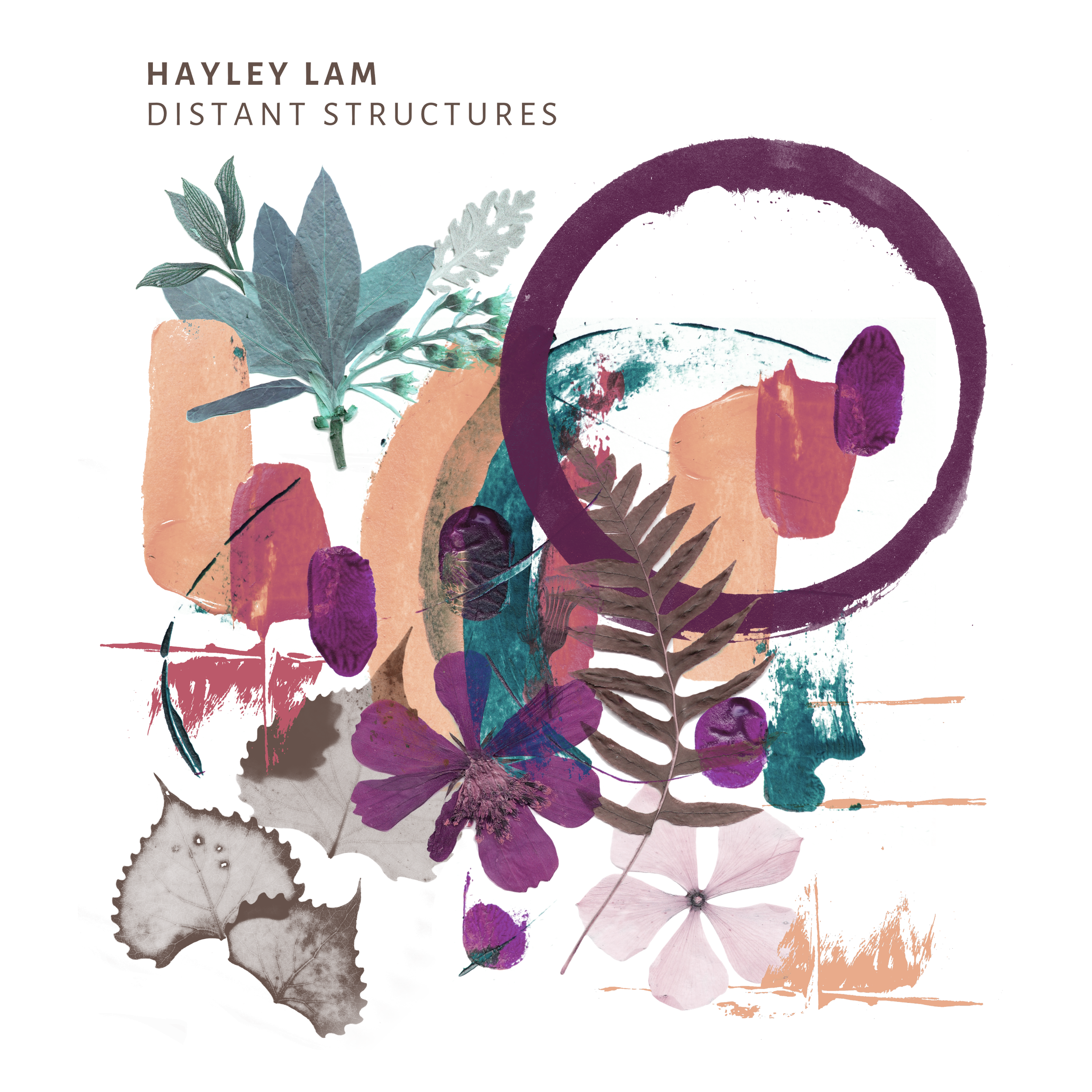 HAYLEY LAM COVER HIGH RES 3000x3000 digital outlets.png