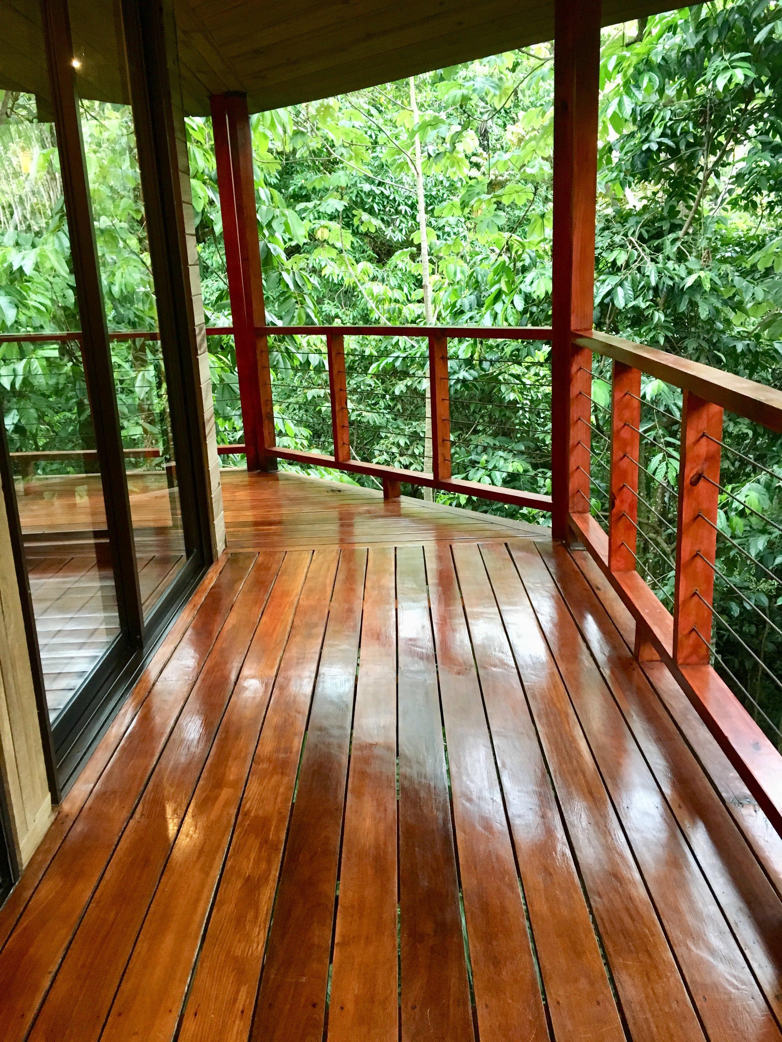 Upstairs deck overlooking jungle