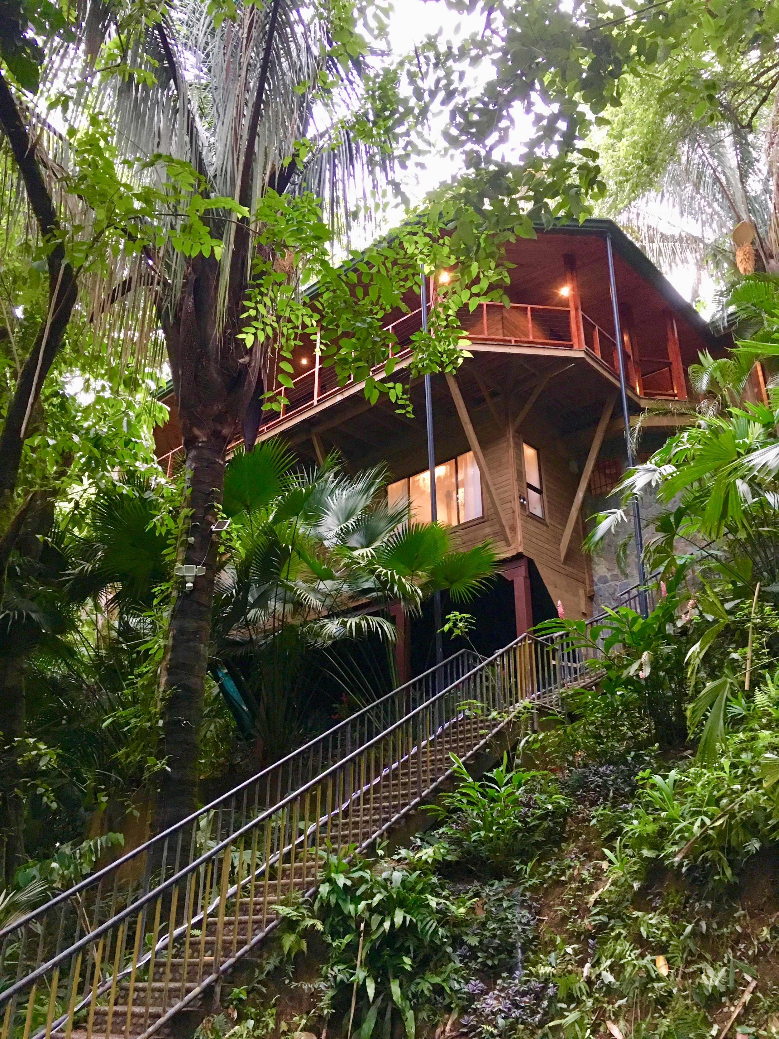 Bali Tree House from the bottom parking area