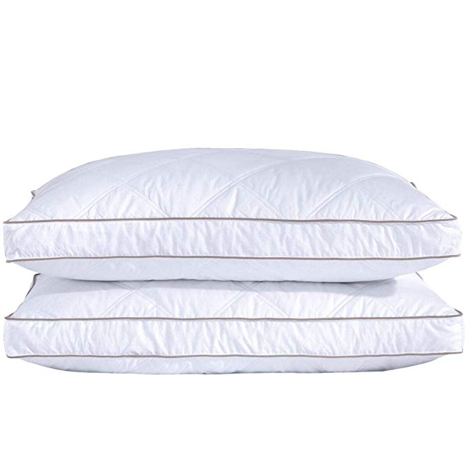 2x 2 Standard Goose Down Pillow Inserts