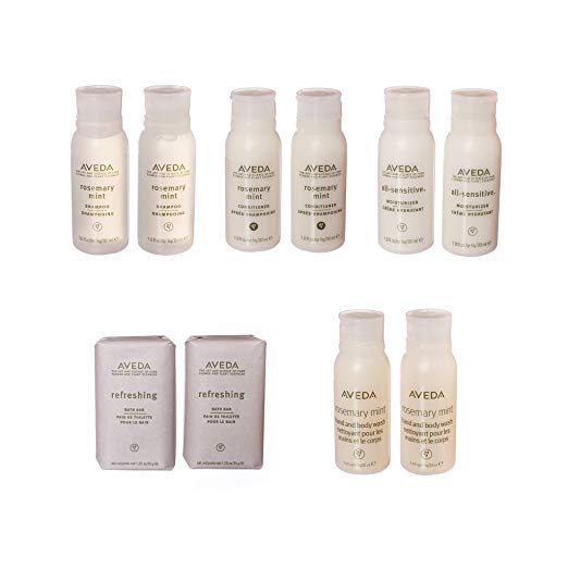 Aveda Travel Size Toiletry Set