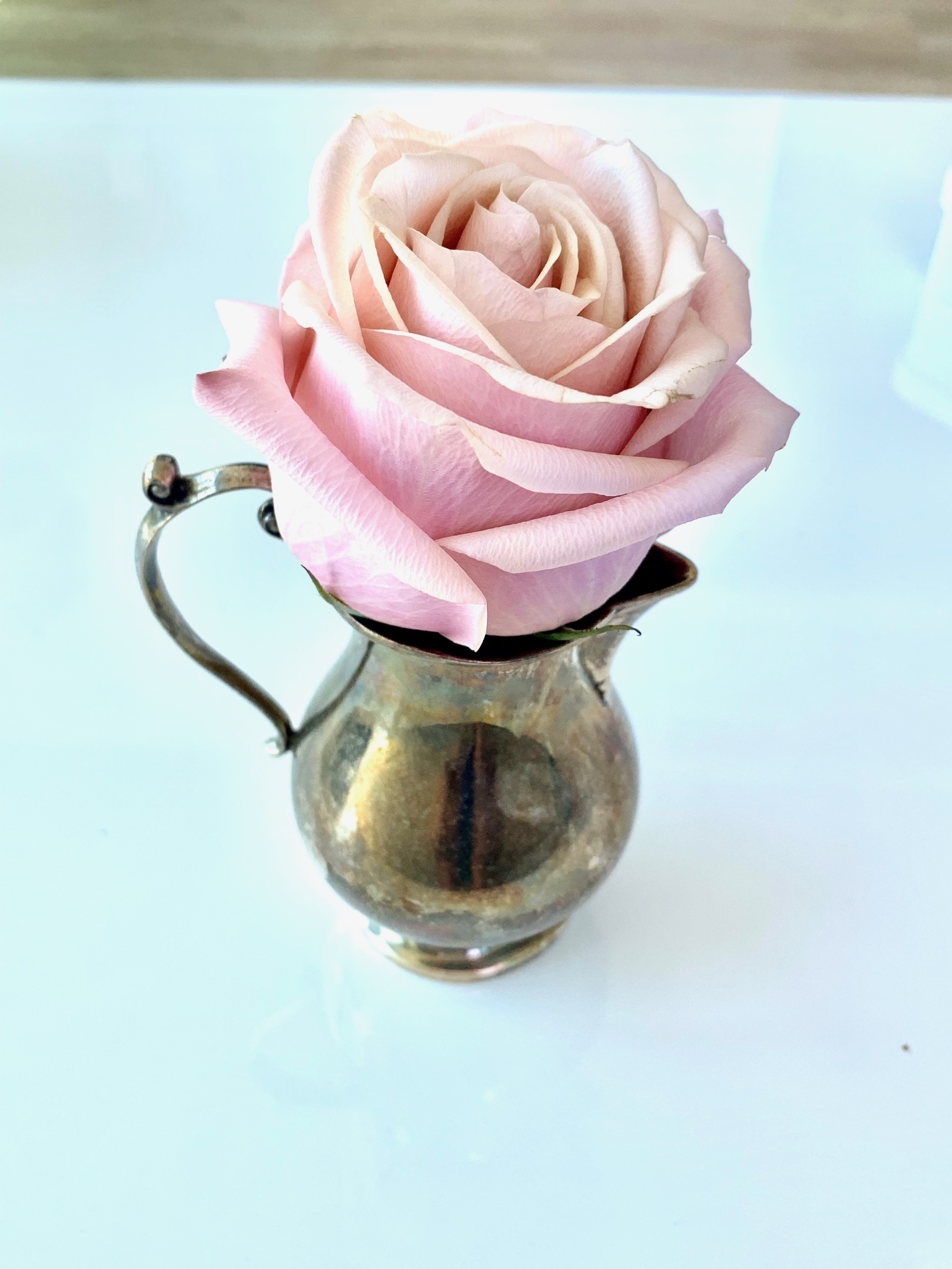 Tarnished silver creamer pitcher dually purposed as a tiny vase, made much prettier with a fresh-cut pink rose… totally imperfect but also super cute and elegant in its own way!