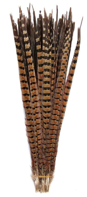 Natural Pheasant Feathers