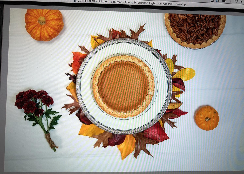 Thanksgiving - Stop Motion Photo Shoot - Screenshot